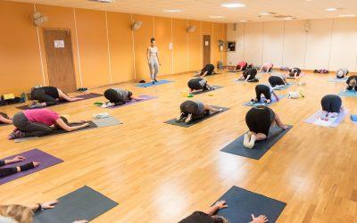 Mind & Body Yoga