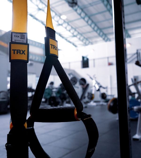Upper Body TRX
